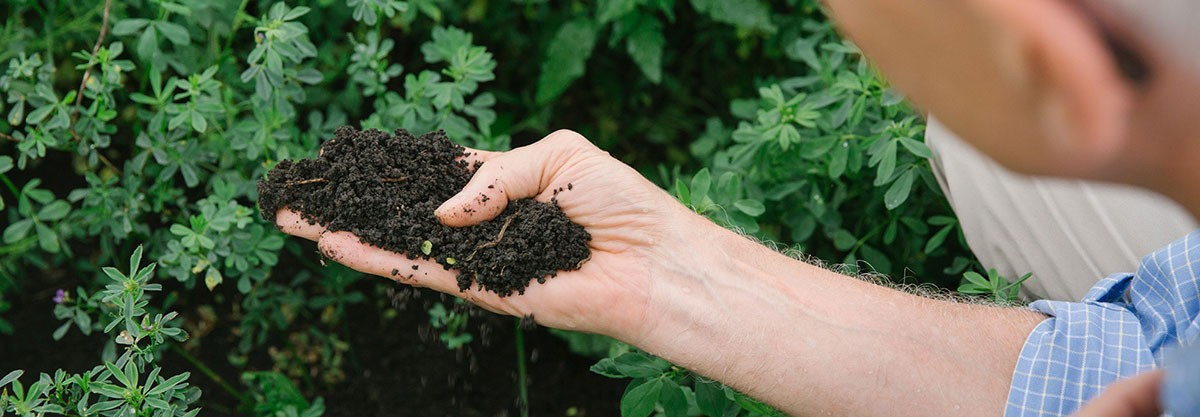 Earthjustice is working with states to enact healthy soil laws that provide incentives to farmers whose management practices contribute to healthy soils and store greenhouse gases.