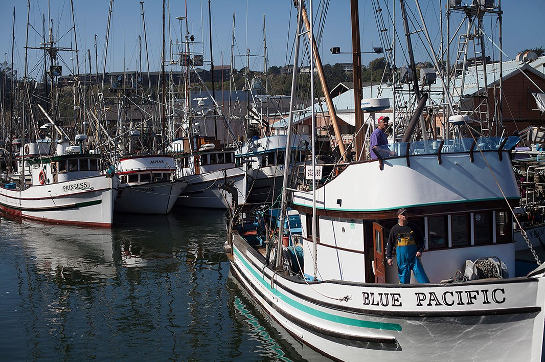 Fishing boats crowd the tiny harbor of Ft. Bragg, California. The influx of fishermen equals a dramatic rise in sales at local restaurants, motels, supply stores and other businesses in Ft. Bragg and coastal communities like it along the West Coast that c