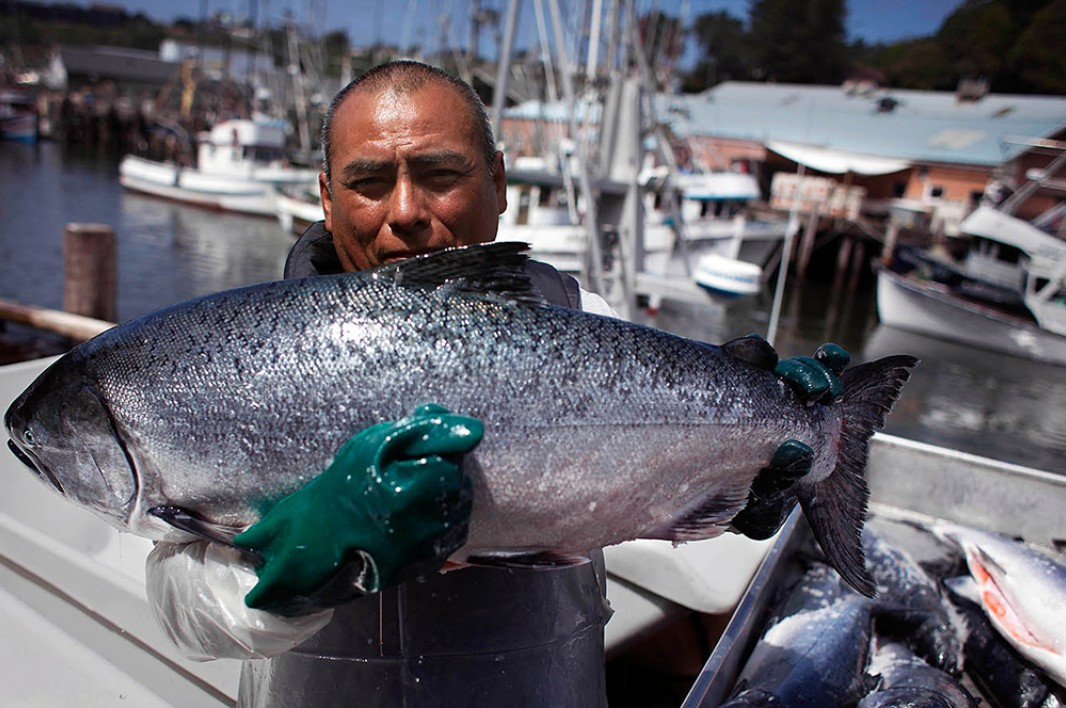 Jose Chi holds up an impressively large king salmon that was caught in the Pacific Ocean near Ft. Bragg, CA.