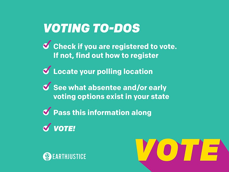 A checklist of voting to-dos. Vote!