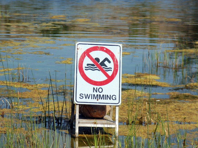No swimming sign in a body of water
