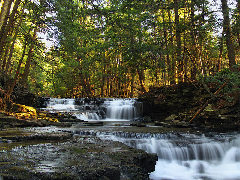 Fall Brook in Susquehanna County. The Constitution Pipeline and access roads will disturb hundreds of acres of land and will cut across forests, watersheds, and special protection waters.'